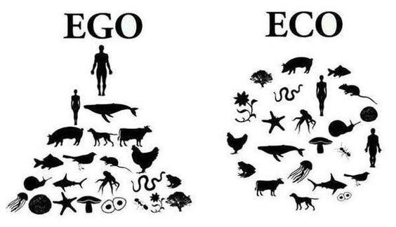 ego-v-eco